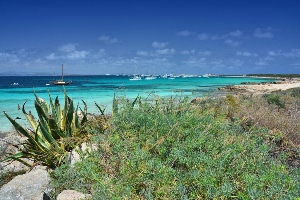 Formentera Cruise Oceanbeat